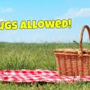 Drinks That Don't Attract Wasps, And Other Essential Picnic Tips
