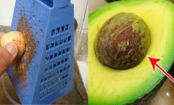 Here's Why You Shouldn't WASTE The Avocado PIT...