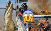 30 Pics that PROVE that AUSTRALIA is the CRAZIEST place on EARTH