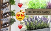 EASY tips to turn your tiny KITCHEN into a beautiful, bountiful GARDEN!