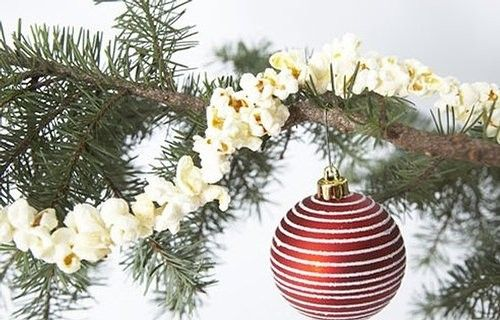10 Edible Decorations for your Christmas Tree