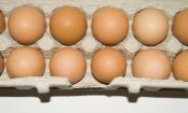 Kitchen HACK: How To Test If Eggs Are Still Good