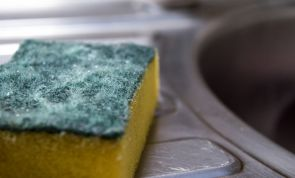 Do you know how often you should really change your kitchen sponge?