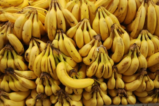 Bananas Are On the Verge of Extinction (Again)
