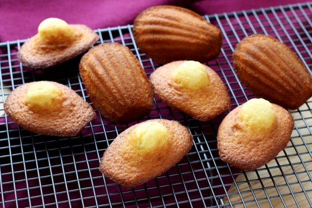 Madeleines, the only recipe you can trust