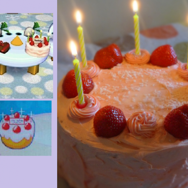 Animal Crossing Wild World Birthday Cake Recipe 435
