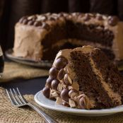 Malted Chocolate Stout Cake