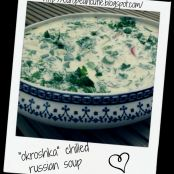 low fat version okroshka