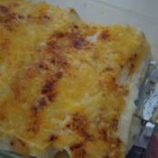 Light Spice Chicken Enchiladas