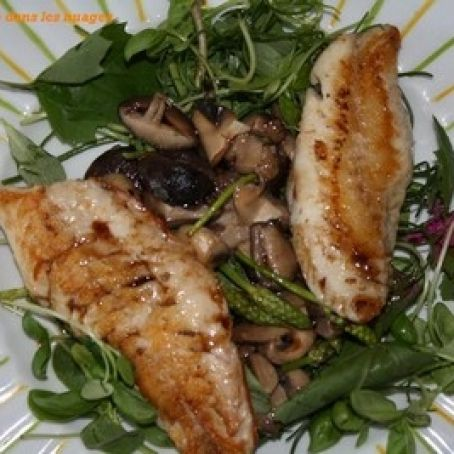 Red mullet fillets on mushrooms and greens